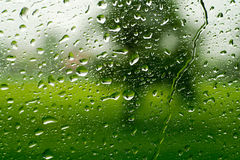 Rain Droplet on clear glass. Rain on the window - green forest background Stock Images