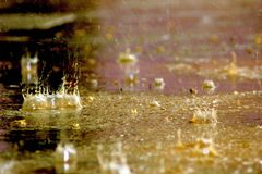 A rain droplets Royalty Free Stock Images