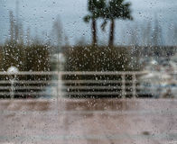 Rain droppe Arkivfoton