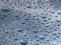 Rain drops. On blue surface royalty free stock photography
