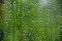 Rain drops 3 Royalty Free Stock Images