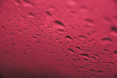 Rain drops Royalty Free Stock Image