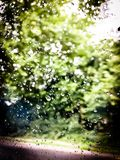 Rain drops on the car window. With blurry background of green forest during the trip in South East England Stock Photo