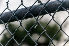 Rain drops on chain link fence after a storm. Clean chain link after a rain in spring Stock Photography