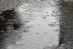 Rain Royalty Free Stock Photos