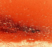 Rain red background  Stock Photography