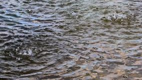 Rain drops falling and making ripple, sky is reflected in the dark water. Weather background animation.  stock video footage