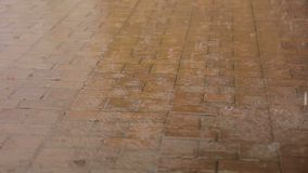 Rain drops fall on the sidewalk tile in the park. stock footage