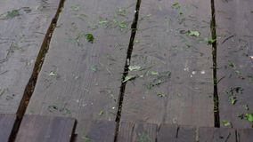 Rain drops on floors boards stock video footage