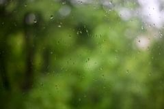 Rain drops on glass with green trees in background royalty free stock photos