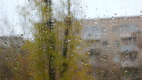 Rain drops on the glass stock video footage