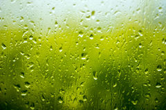 Rain drops on the glass. Stock Photos