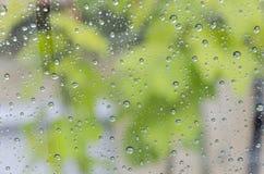 Rain drops, green background Royalty Free Stock Photo