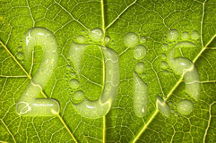 2015, rain drops on a green leaf Royalty Free Stock Photos