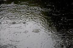 Rain drops. On a lake Stock Photo