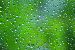 Rain drops. Stock Image