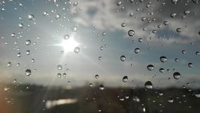 Rain drops royalty free stock photos
