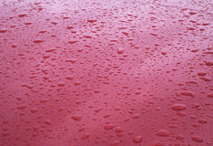 Rain drops on red car hood Stock Images