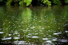 Free Rain Drops Rippling In A Puddle With Blue Sky Reflection Royalty Free Stock Image - 112809386