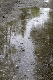 Rain drops rippling in a puddle. In the forest stock photography