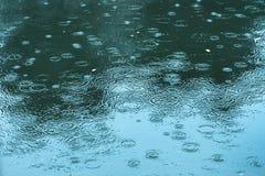 Rain drops rippling Royalty Free Stock Photos