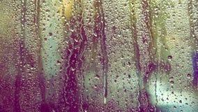 Rain drops stock video footage