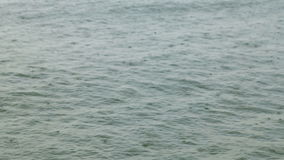 Rain drops on the sea