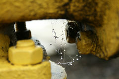 Spider web with dew drops closeup. Rain drops on spiderweb photo Royalty Free Stock Image