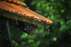 Rain drops on top Royalty Free Stock Images