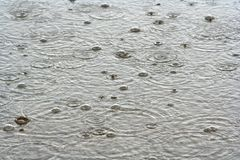 Rain Drops In The Water stock images