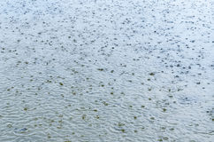 Rain drops on water Royalty Free Stock Photography