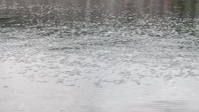 Rain on the water stock video footage