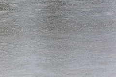 Rain drops on a water surface Royalty Free Stock Photo