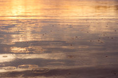 Rain Drops on the water. Surface of the water at sunset Royalty Free Stock Images