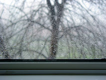 Rain drops on the window. With windowsill and a siluette of a tree behind it Royalty Free Stock Photos