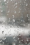 Rain drops on the window Royalty Free Stock Image