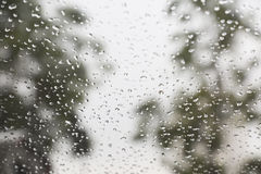 Rain drops on window with a background. Drip Stock Photos