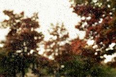 Rain drops on window Stock Image