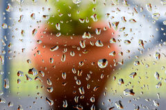 Rain drops on window glass on the background flower pot Royalty Free Stock Images