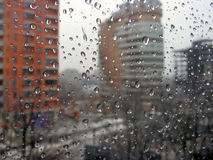 Rain drops. On the window glass: city buildings are behind Stock Images