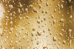 Rain drops on a window glass Stock Images