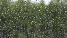 Rain drops on window glass, rainy autumn day stock video footage