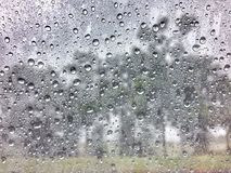 Rain drops on window glasses. Blurred trees in the nature background Stock Photo