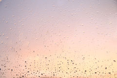 Rain drops on the window. Stock Image