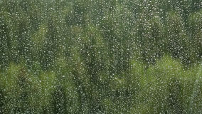Rain drops on a window Royalty Free Stock Photo