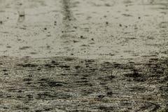 Rain fall on the road. Stock Photos