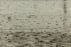 Rain fall on the road. Royalty Free Stock Photos