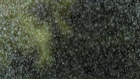 Rain falling, Normandy,. Slow motion 4K stock footage