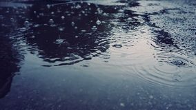Rain falling on pavement. In slow motion stock footage