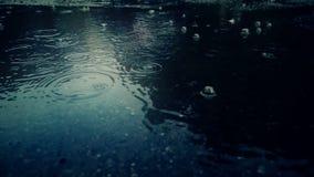 Rain falling on pavement stock video